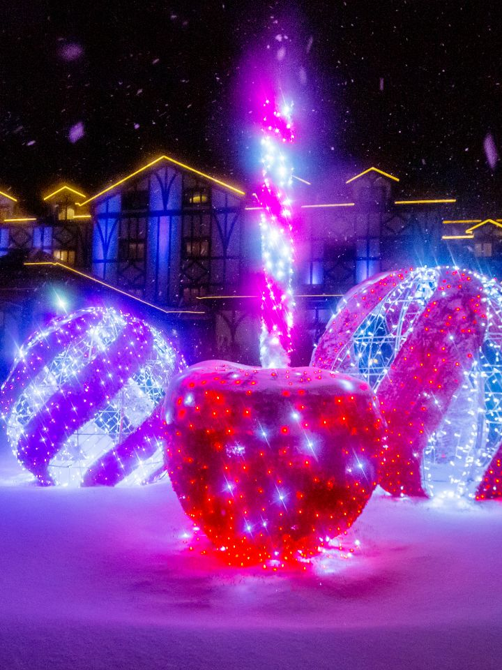 Holiday lights outdoors